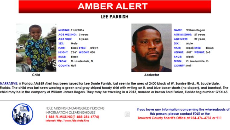ca69d77e-amber alert flyer.PNG