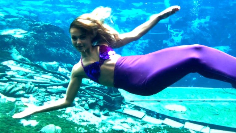 67775ffd-Weeki Wachee Mermaid