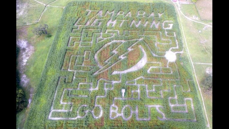 2d2e1a88-Lightning corn maze actual maze_1443483398149.jpg