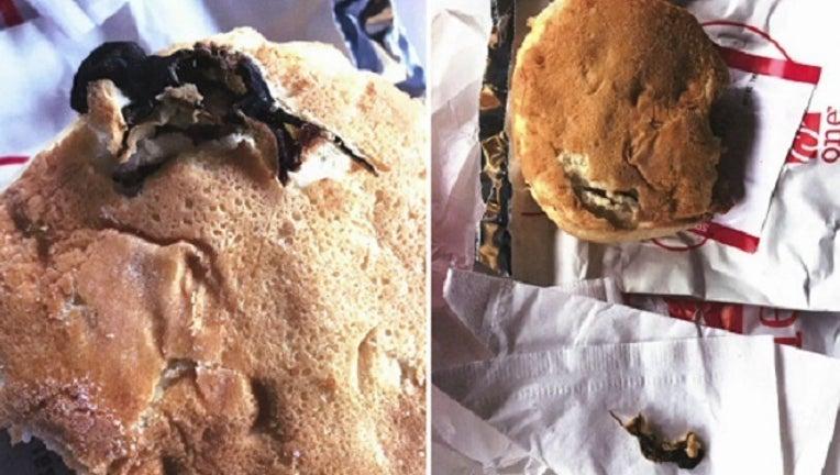 9b1b0e17-Rodent Found in Chick Fil A Sandwich_1502796444528-401096.jpg