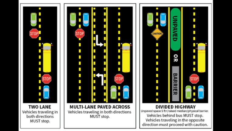0fc3bf56-School_buses-03-01-1024x691_1502299202943.png