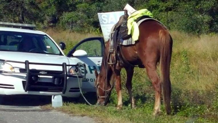 8164ce87-dui on horseback_1509716382686.jpg