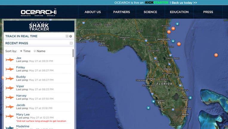 1cd10b2e-ocearch-shark-tracker_1464404913398-402429.jpg