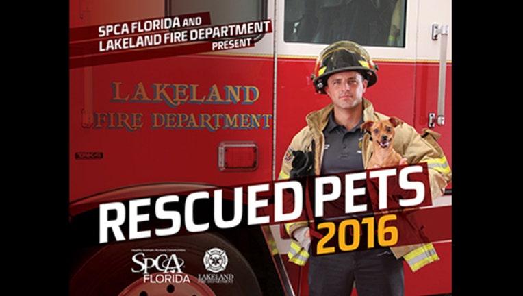 21157098-rescued pets_1449614820371.jpg