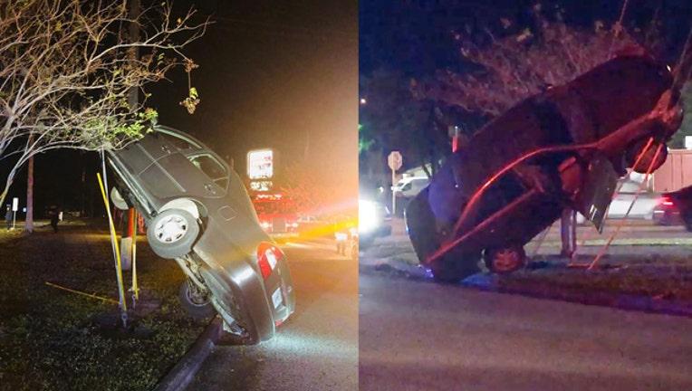 7091e319-st. pete car crash_1542795845257.jpg.jpg