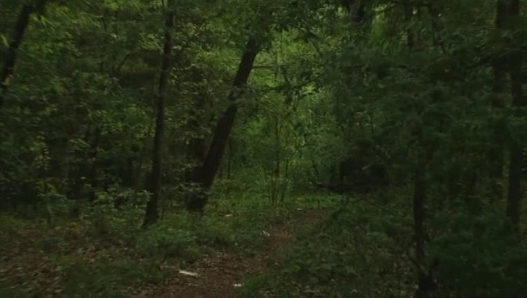 3d716554-Woods -401096.jpg
