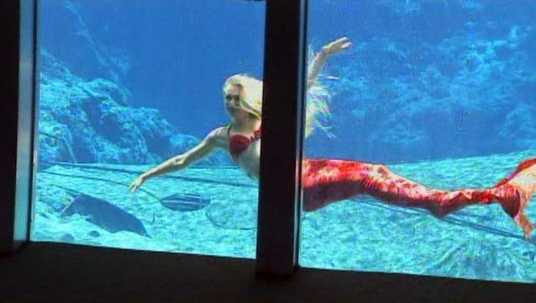 0b64fec7-weeki wachee mermaid_1515690039333.jpg.jpg