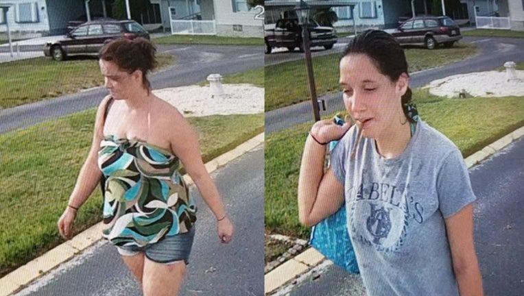 97d78681-zephyrhills suspects_1537781867426.jpg.jpg