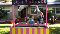 Selling lemonade to fight cancer just got easier thanks to the kindness of strangers