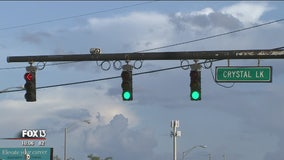 Sensors can predict red light-runners; delay green light for cross traffic