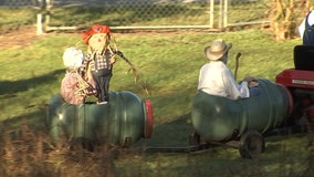 Charley's World: Scarecrow Festival