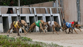Dog racing supporters challenge amendment constitutionality