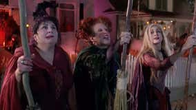 'Hocus Pocus,' 'Enchanted' sequels both greenlit by Disney, director confirms