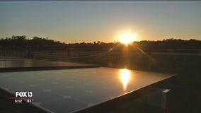 FP&L creating world's largest solar energy storage facility