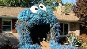 Woman's Halloween display of giant Cookie Monster amazes community