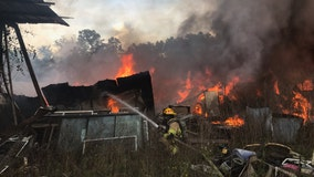 Arsonist may have set fire to barns on Brooksville property