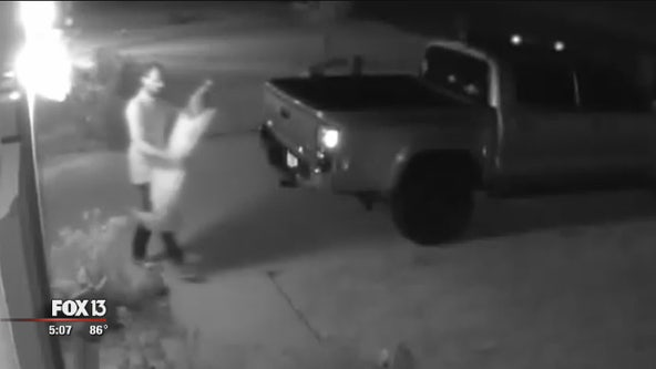 Halloween decoration thief targets Palmetto neighborhood