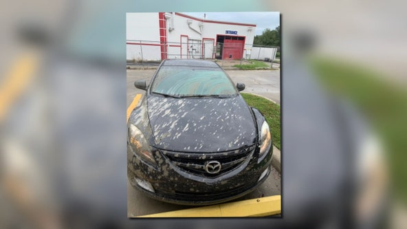 Splashed concrete blamed for damage to car