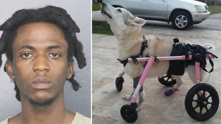 683e326e-191010-stolen-dog-arrest_1570723226692.jpg