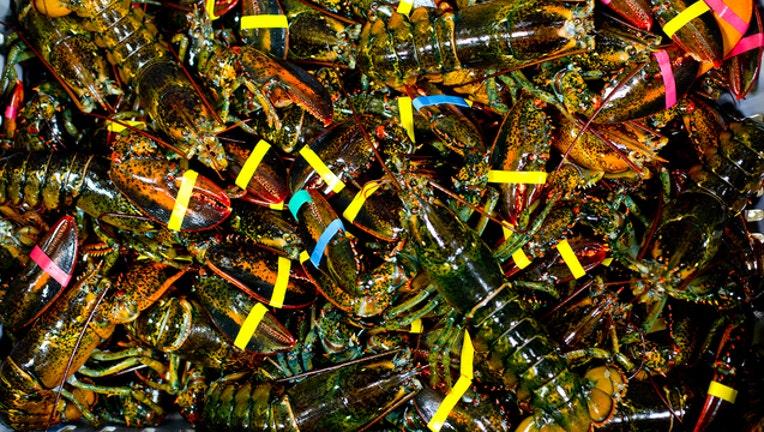 57fe3b0b-GETTY lobster_1569401186525.jpg.jpg