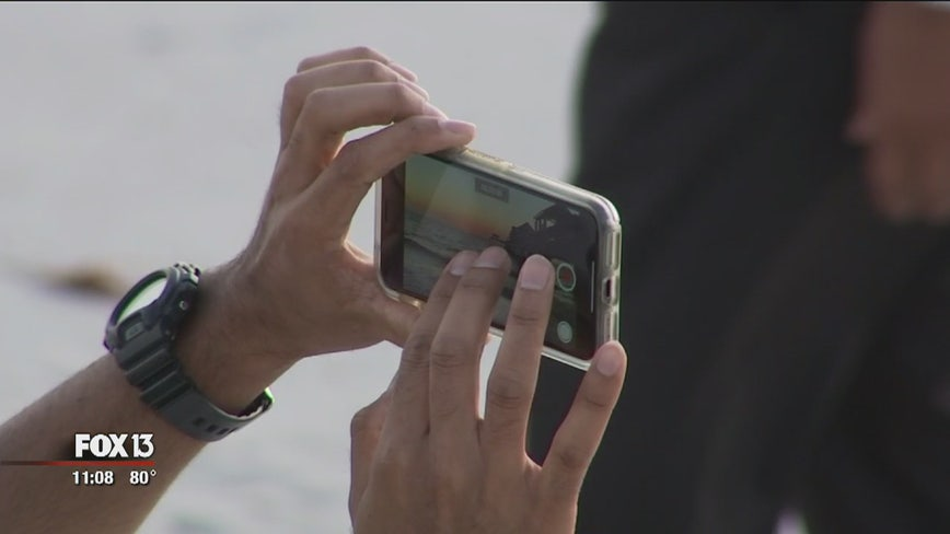 Sharenting: Social media posts about your kids could lead to identity theft