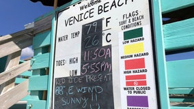 Beachgoers, business owners hope red tide doesn't get worse