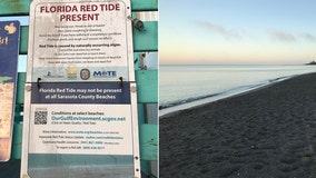 FWC: High concentrations of red tide detected in Sarasota County