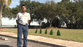 Christmas trees now memorialize Sebring bank massacre victims
