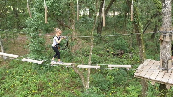 Hop between trees at this aerial adventure park