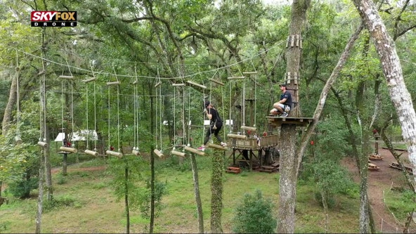 Florida won't feel flat at this aerial adventure course