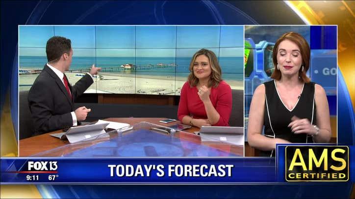 Saturday Morning Weather Fox 13 Tampa Bay
