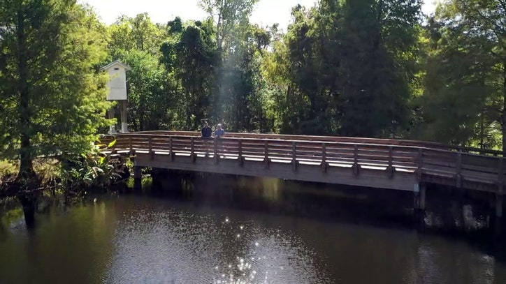The unexpected beauty of Clearwater's Moccasin Lake Nature Park - FOX 13 Tampa Bay