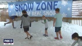 Play in the snow at The Florida Aquarium