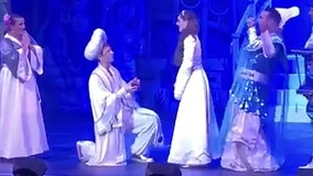 Actor playing Aladdin pops the question to Jasmine while on stage