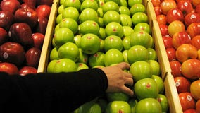 New 'Cosmic Crisp' apple variety lasts 'for more than a year,' farmers say