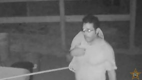 Manatee deputies seek person of interest in horse slaughter case