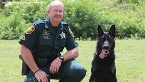 Polk County K9 retires