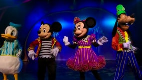 Disney costumed characters say tourists inappropriately touched them