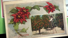 The enduring allure of Florida's Christmas cards