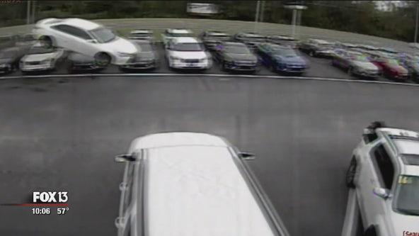 Car goes flying onto Citrus County car dealership