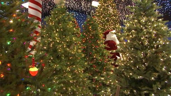 Robert's Christmas Wonderland is in its busy season
