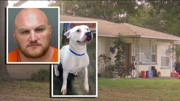 Neighbors record man beating dog unconscious: police