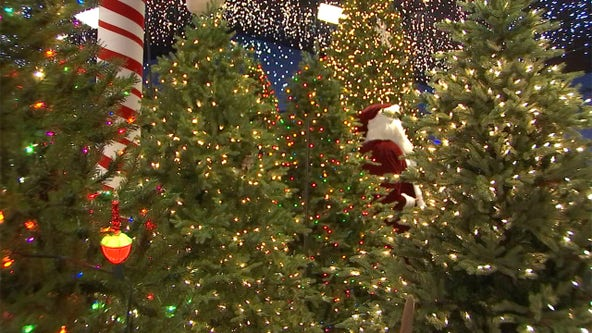 Get into the holiday spirit with a visit to Robert's Christmas Wonderland