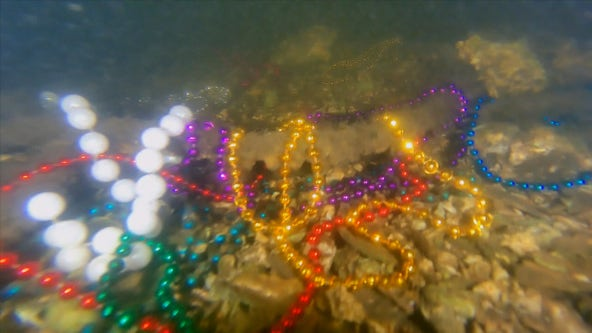 Tampa mayor launches campaign to keep beads out of the bay