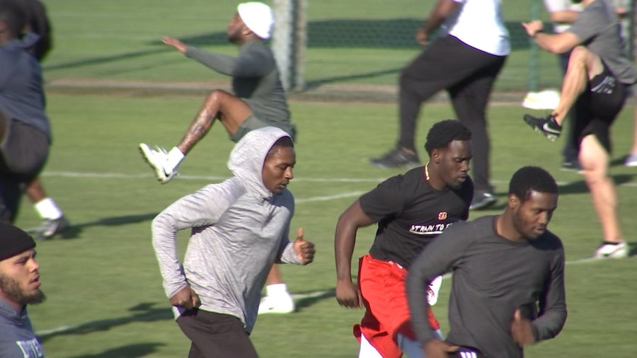 Tampa Bay Vipers kickoff offseason workouts in Plant City
