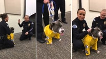 This terminally ill pup is sworn in to become K9