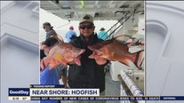 Good Catch: Fishing after a cold snap