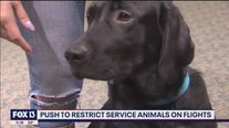 New rules for service animals on planes