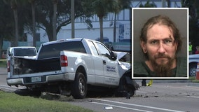 Driver took two shots before deadly crash that killed Bayshore jogger: TPD