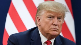 President Trump Impeachment Trial: Democrats open 2nd day of arguments in US Senate